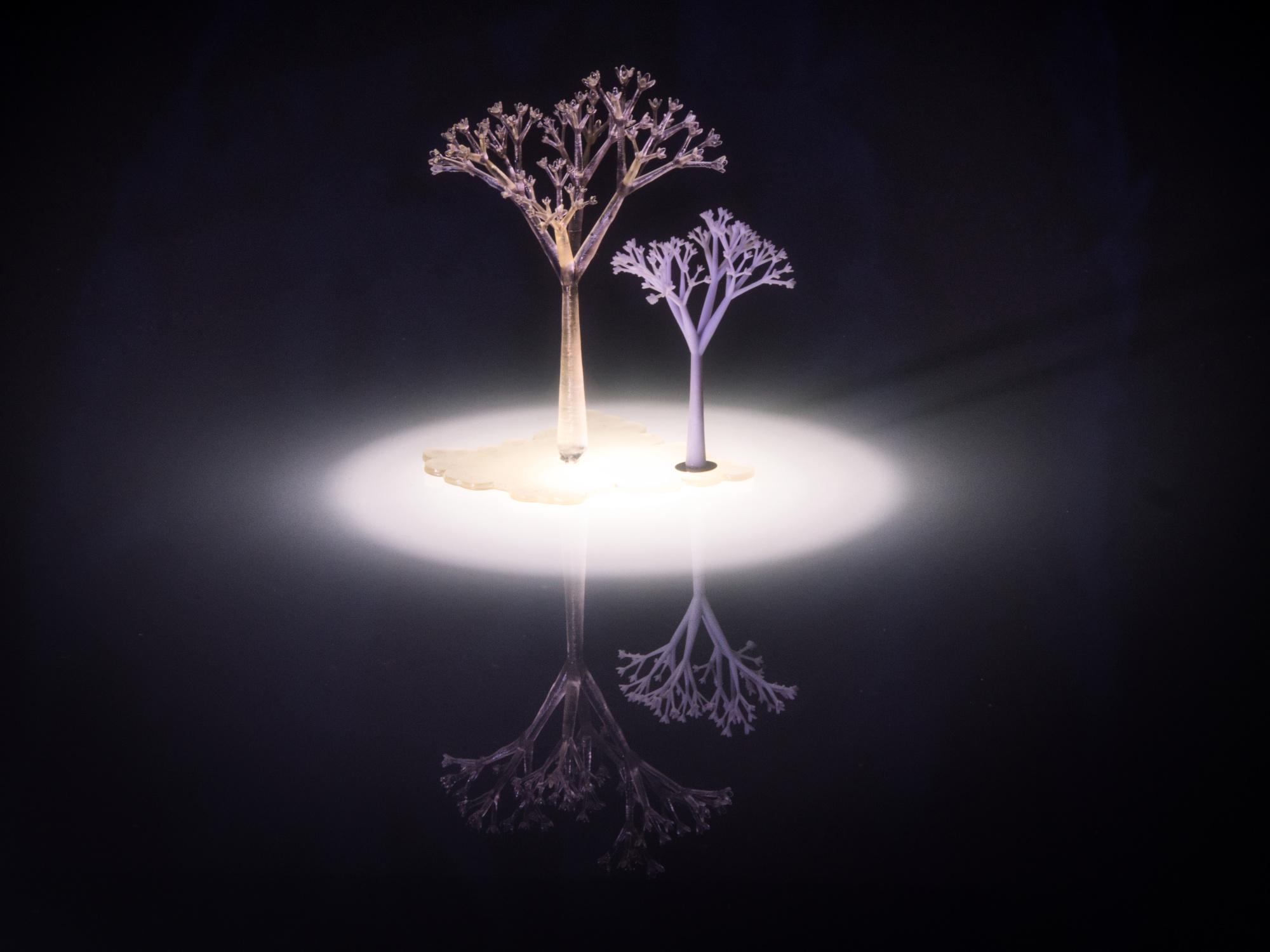 Bit Tree